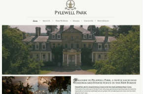website consultancy for Pylewell Park